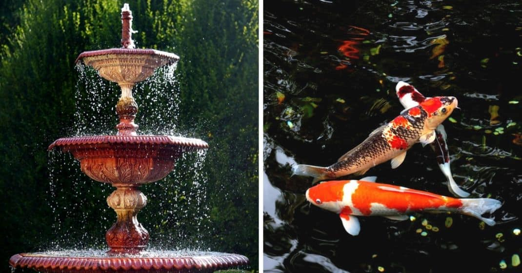 water-features-garden
