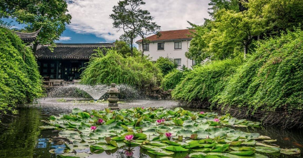 garden-pond-maintenance