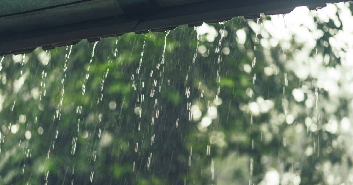 reasons-garden-shed-leaks-featured-image-freepik