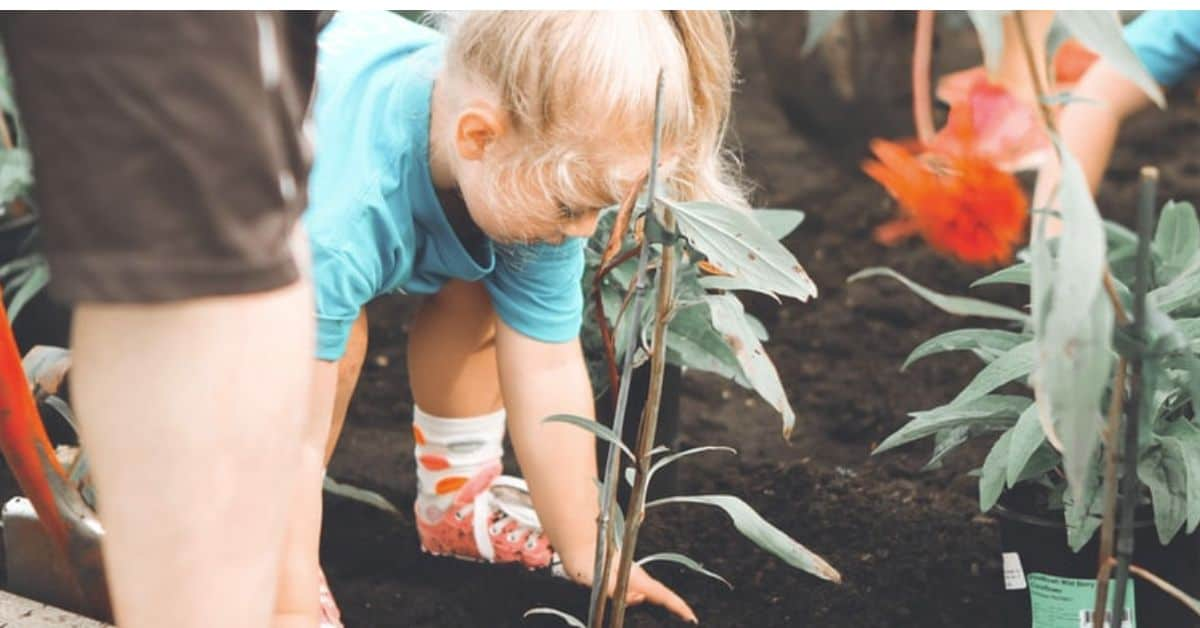 lockdown-basic-gardening-chores
