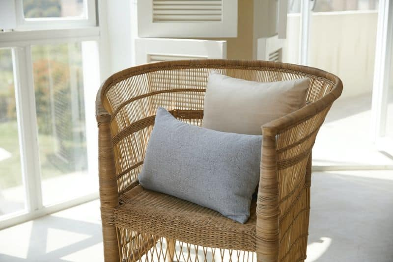 rattan curve-backed chair with cushions in a light room in front of a window