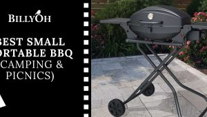 Best Small Portable BBQ (Camping & Picnics)